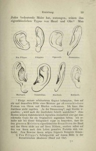 Figure 2: Morelli's Taxonomy of Artists by Ear Shape